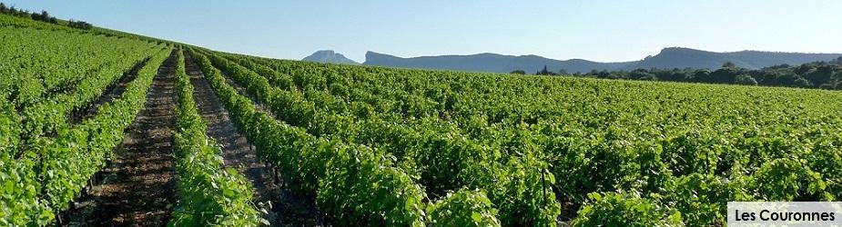 Les Couronnes Chateau de Lancyre AOC Coteaux du Languedoc Pic Saint Loup